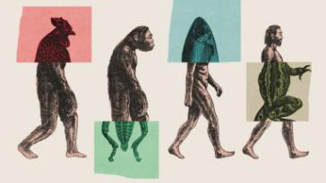 التحدر المشترك: كل شيء أو لا شيء -هل بمكن القبول بنظرية التطور الصغري ورفض نظرية التطور الشامل؟ هل هذا حل وسط بين رافضي التطور و مؤيديه؟